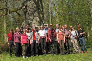 Vi rekommenderar alla att ta chansen att besöka Białowieżas-skogen. Det var en enastående upplevelse!